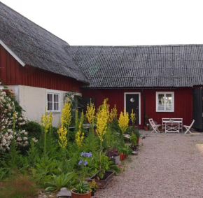 Augustas Bed & Breakfast in Falkenberg