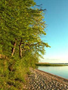 Achterland der Ostsee-Insel Usedom (Foto © nordlicht verlag)