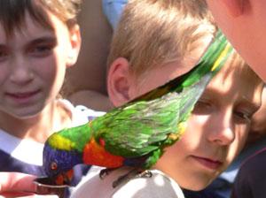 Vogelpark Marlow (Foto: Vogelpark Marlow)